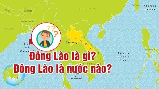 dong-lao-la-gi