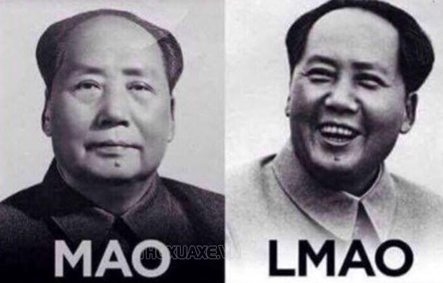 lmao-mao-trach-dong